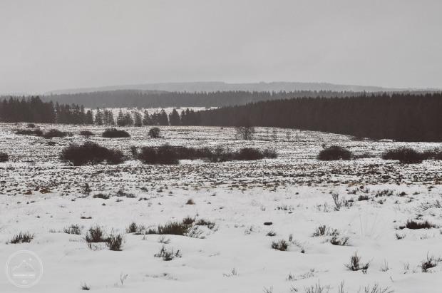 winterbivaktocht-hikingadvisor-2016_23972058414_o