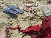 Westland's beach