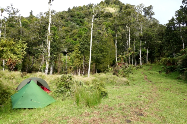 Camping after Raetea forest - Te Araroa