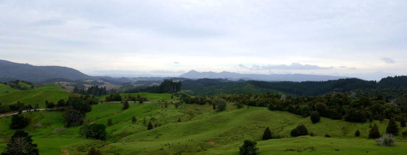 Te Araroa Trail between Herikino and Raetea forest