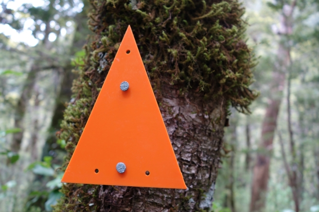 Orange triangles on New Zealand's trails
